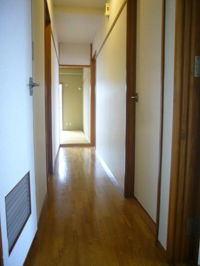 玄関から廊下の様子